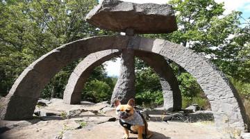 LES COMBRAILLES, DESTINATION « DOG-FRIENDLY » POUR DES VACANCES AU POIL