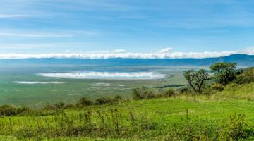 VOYAGE AU CŒUR DU NGORONGORO EN TANZANIE